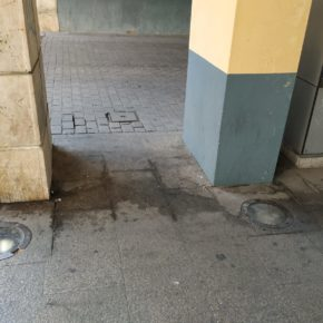 Ciudadanos exige a la Alcaldesa de Aranda que de máxima prioridad a la limpieza e higiene en las calles de la ciudad