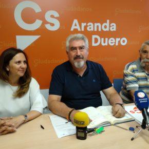 Delgado denuncia esperas de hasta 10 horas en las Urgencias del Santos Reyes de Aranda